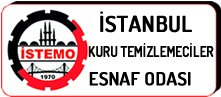 istemo logo